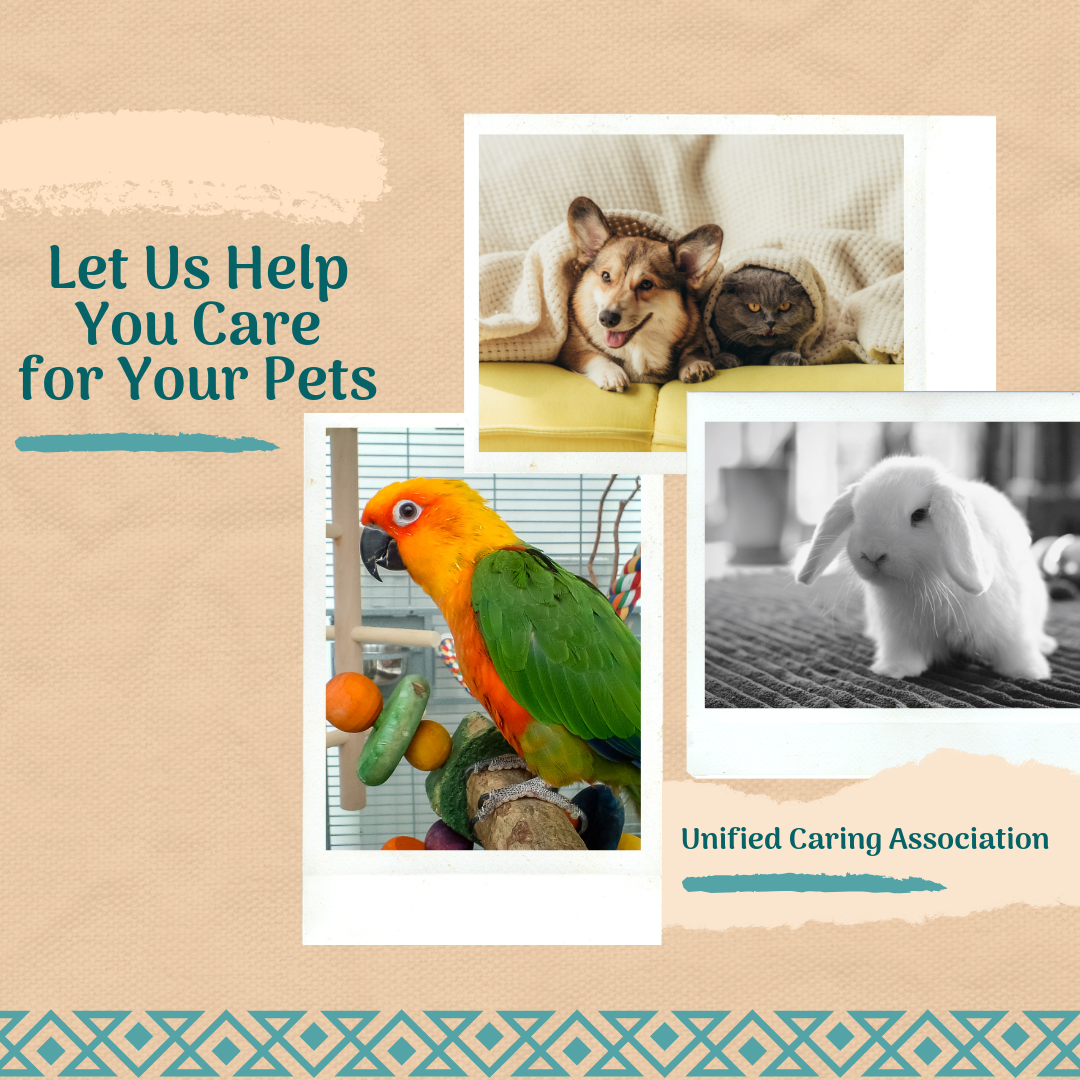 Let-us-Help- You Care for your pets